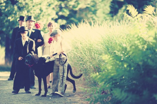 wedding, dog ring bearer, vintage wedding, outdoor wedding, wedding party