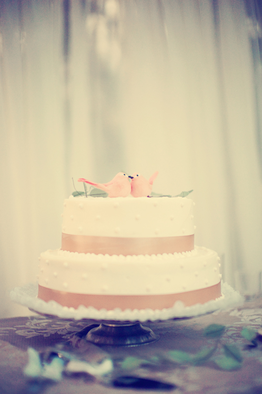 wedding, wedding cake, simple wedding cake, love birds wedding cake